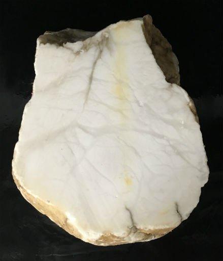 Stone 70lb Tirafsci's White Opaque Slab 15x11x6 #111048