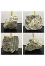 46lb Silver Cloud Alabaster 10x9x8 #662350