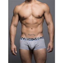 Andrew Christian Andrew Christian 90053 Show-It Tagless Boxer, Heather Gray
