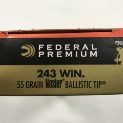 Federal 243 win 55gr nosler bt