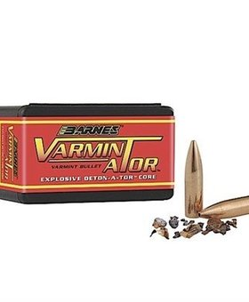 Barnes .204 32 gr HP FB 100 ct.