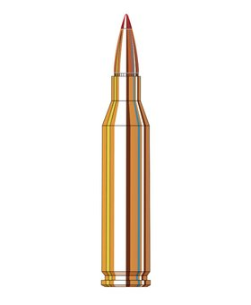 Hornady 22-250 rem 55 gr V-max Varmint Express