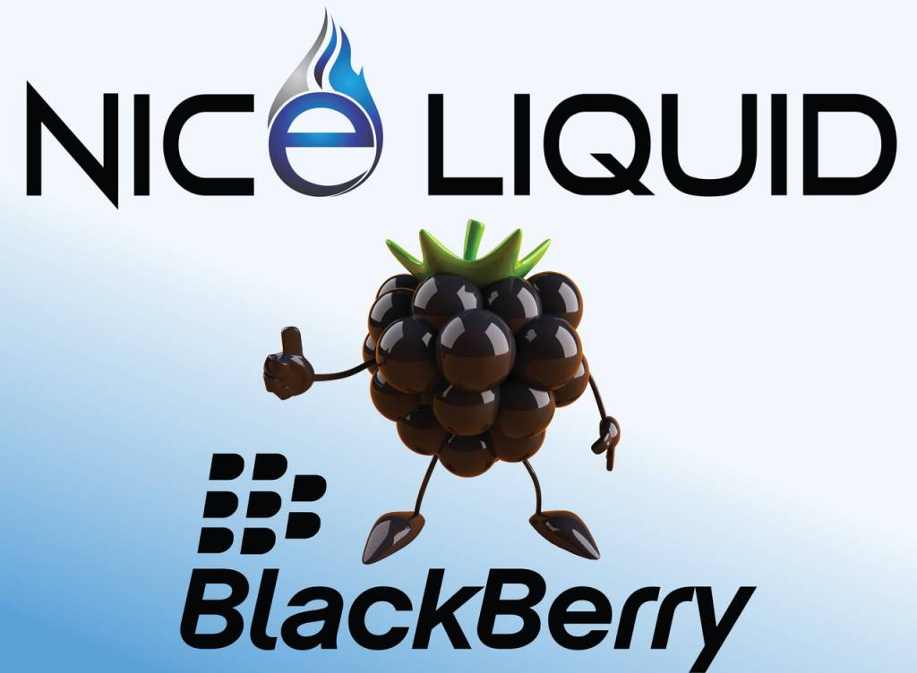 NICE VAPOR NICE LIQUID - BLACKBERRY - 15ml