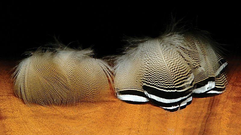 Hareline Wood Duck Feathers