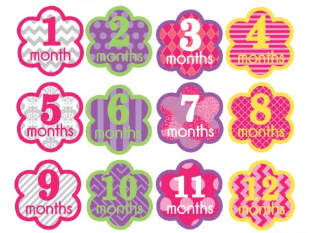 Baby Onesie Monthly Sticker - Girl