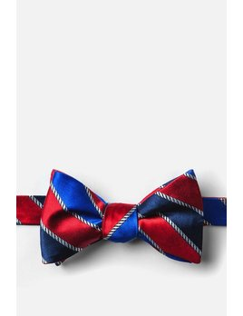 Silk Bow Ties by Alynn Neckwear