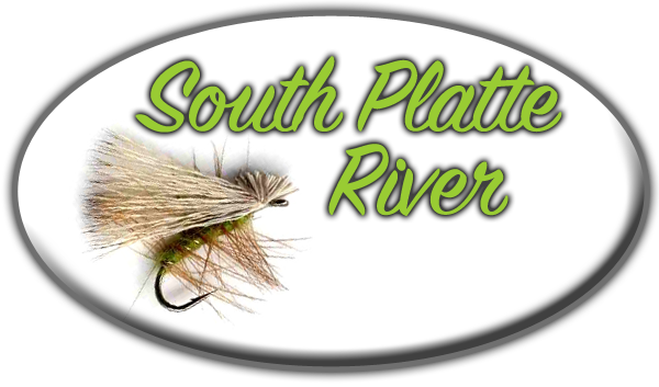 South Platte River Guided Fly Fishing