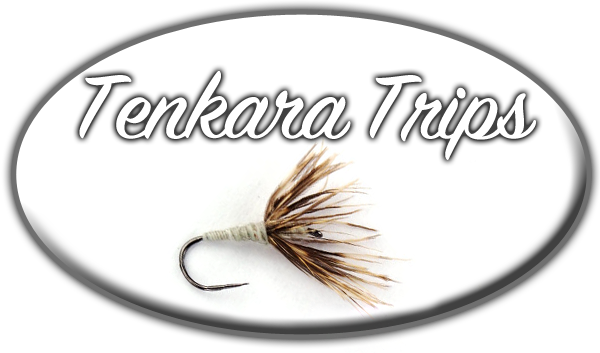 Guided Tenkara Trips. Colorado Tenkara. Tenkara Fly Fishing