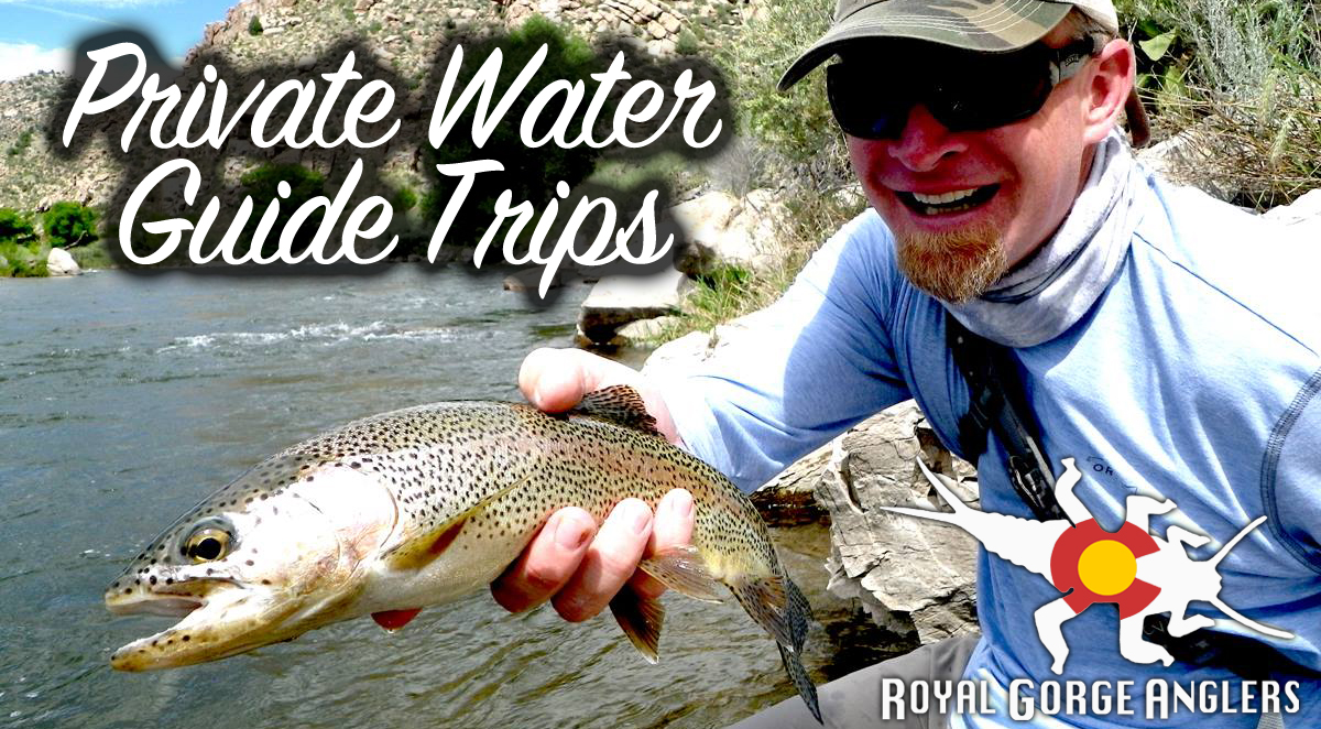 Arkansas River Walk Wade Guide Trips. Guide Trip Arkansas River, Colorado.