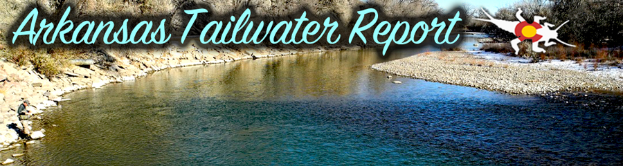 Arkansas tailwater fly fishing report royal gorge anglers for Spinney reservoir fishing report