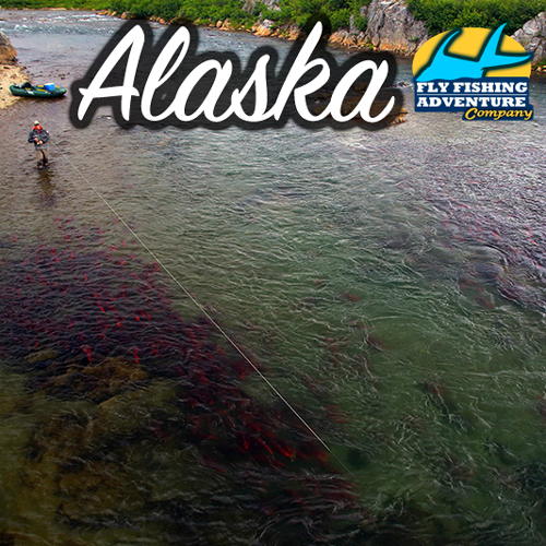 Fly Fish Alaska with Fly Fishing Adventure Company