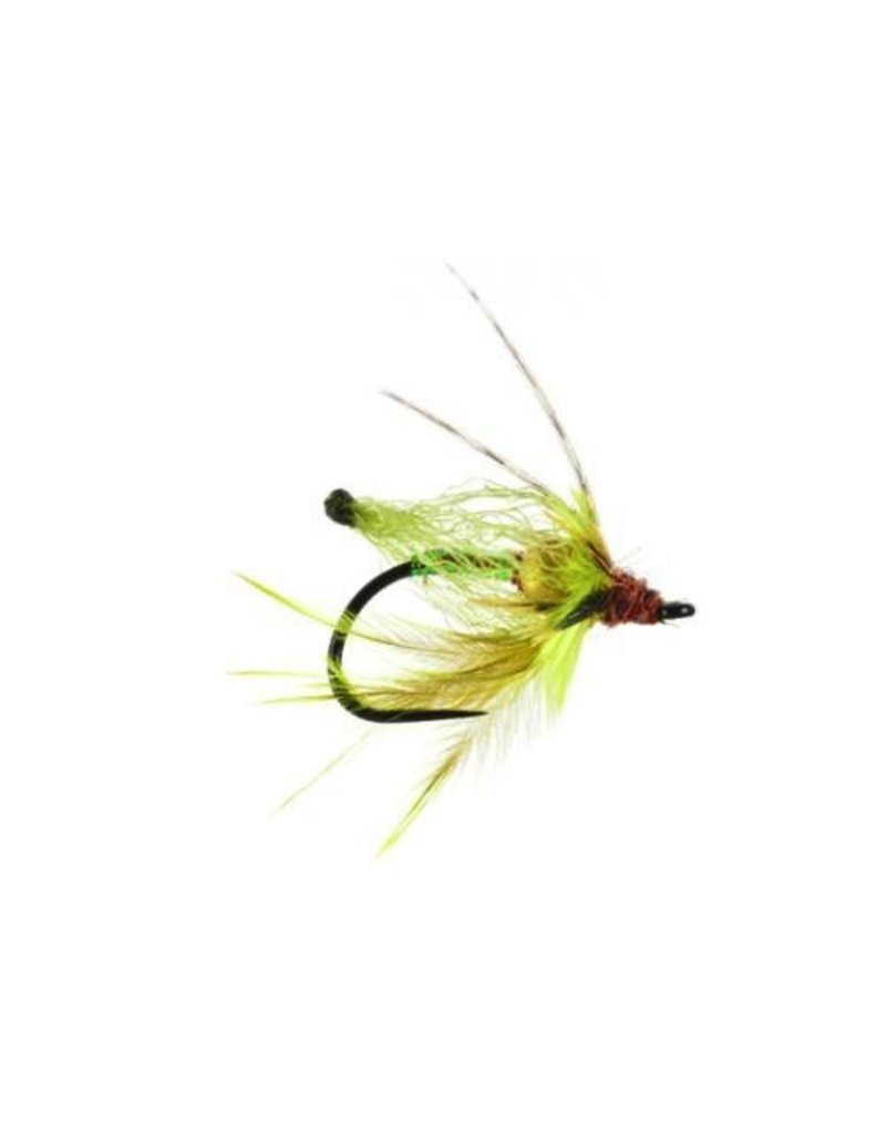 Primetime Pupa Bead Head (3 Pack)