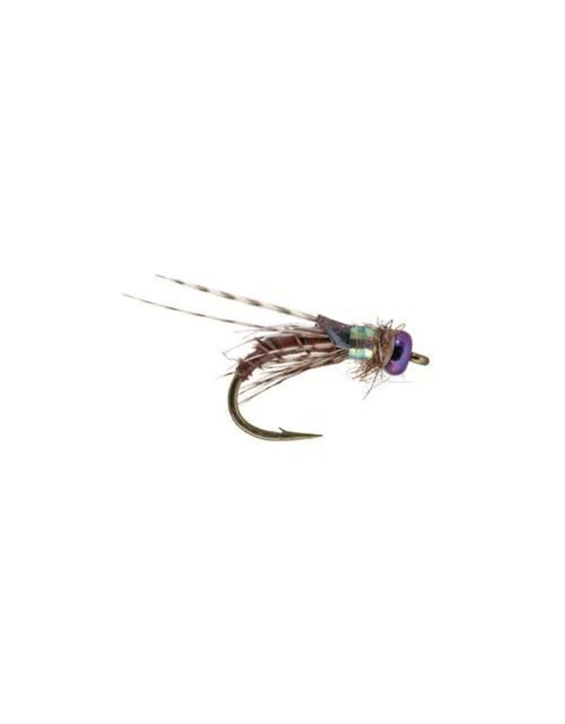 Little Brown Bug, (3 Pack)