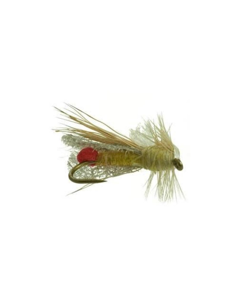 Outrigger Sally (3 Pack)