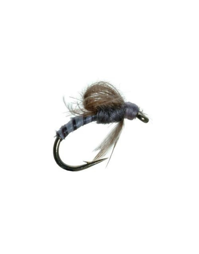 CDC Loop Wing Emerger (3 Pack)