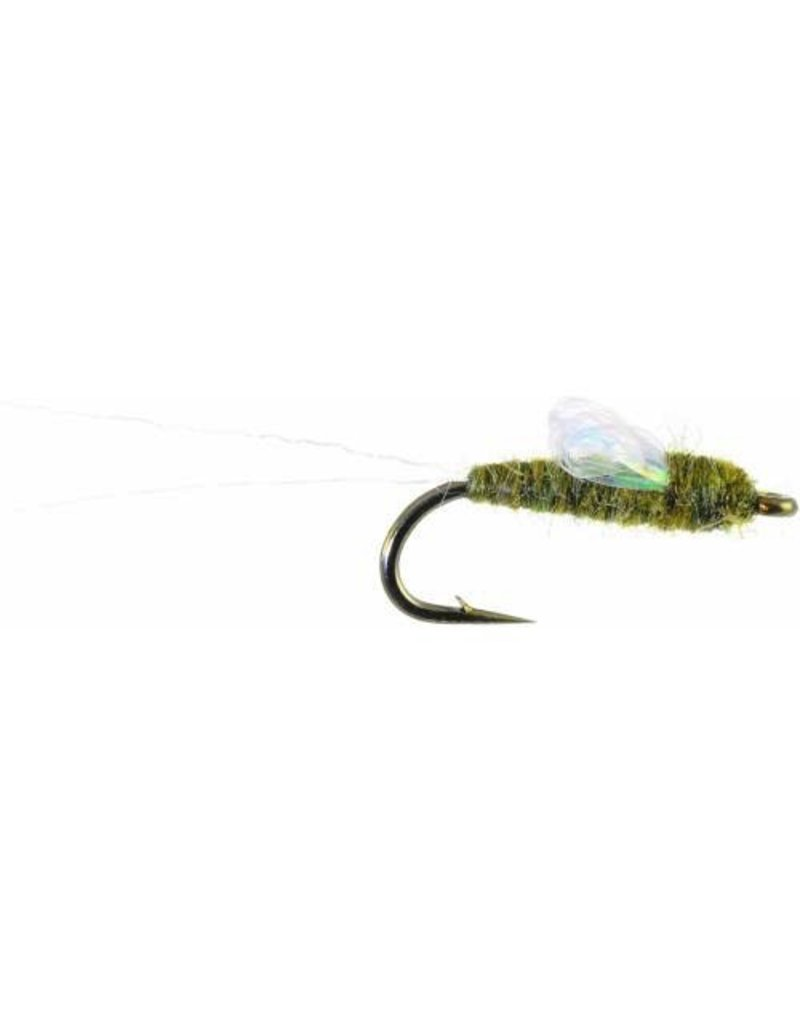 Sparkle Wing RS2 (3 Pack)