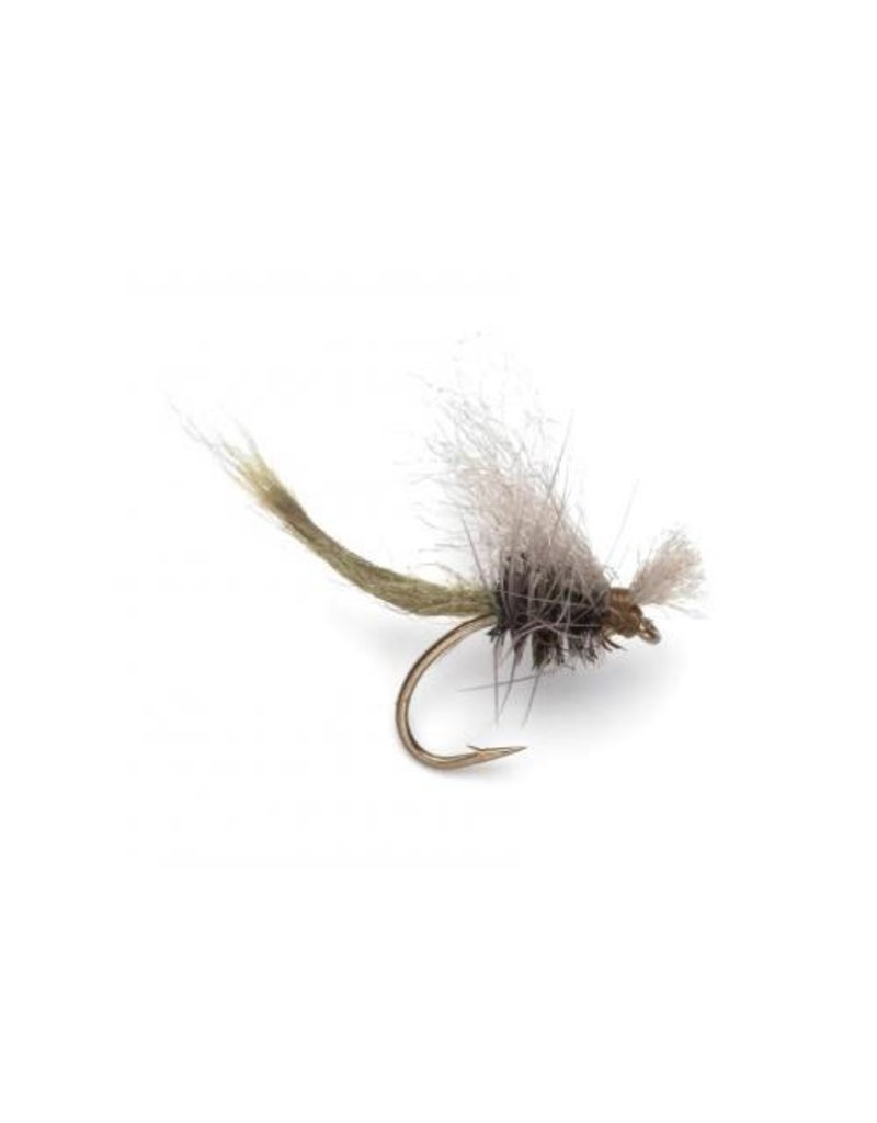 BDE BWO (3 Pack)