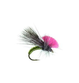Clown Shoe Caddis (3 Pack)