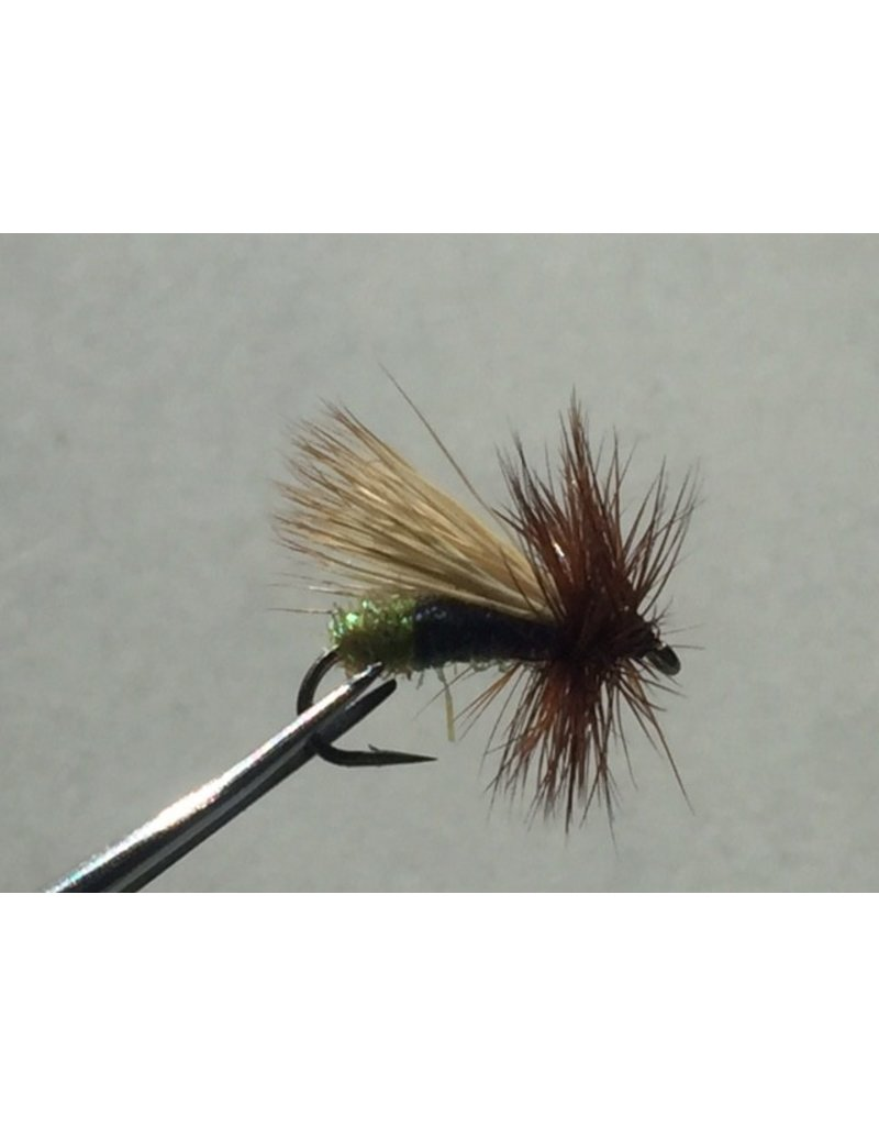 Larry's Egglayer Caddis (3 Pack)