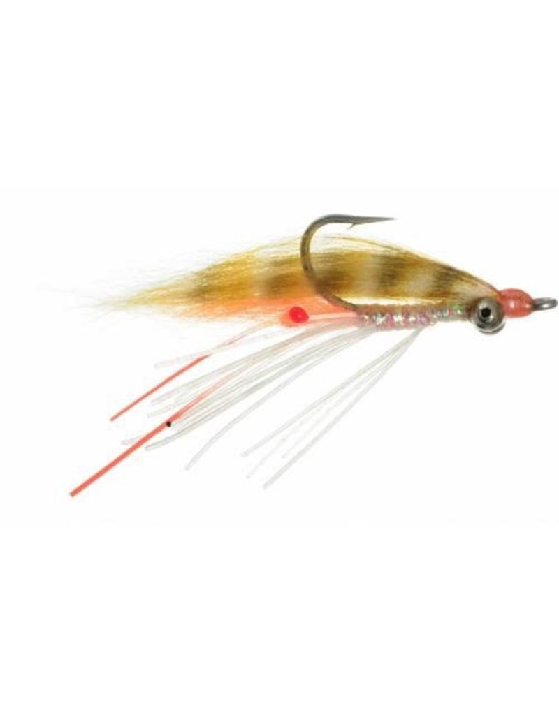 Fly fishing reports orvis lobster house for Learn how to fly fish