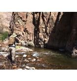 Half Day Backcountry Creek Trip