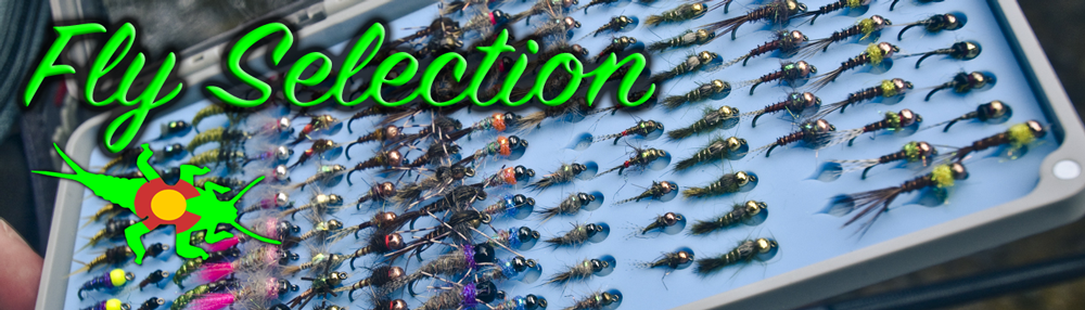 Learn Fly Selection with Royal Gorge Anglers