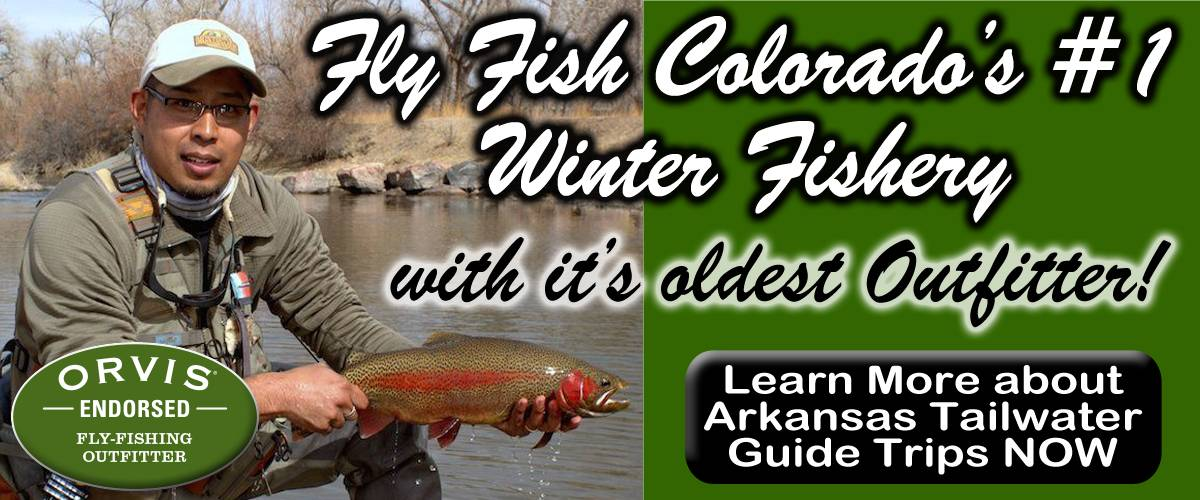 Arkansas Tailwater Fly Fishing Guide