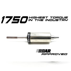 R1wurks 1750-Plus HIGH TORQUE Rotor