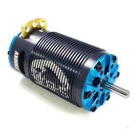 Trinity TEP2202 D8.5 2300kV 1/8 eBuggy Sensored Brushless Motor