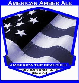 Beer Amberica the Beautiful - PBS Kit