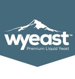 Beer WY4184 Sweet Mead