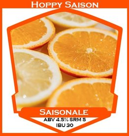 Saisonale Hoppy Saison - PBS Kit