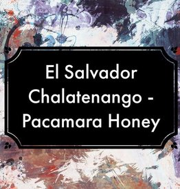 Coffee El Salvador Chalatenango Pacamara Honey Whole Bean Coffee
