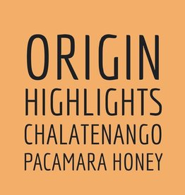 Coffee Origin Highlights Chalatenango Pacamara Honey Whole Bean Coffee