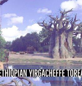 Coffee Ethiopian Yirgacheffe Torea Whole Bean 1 Lb