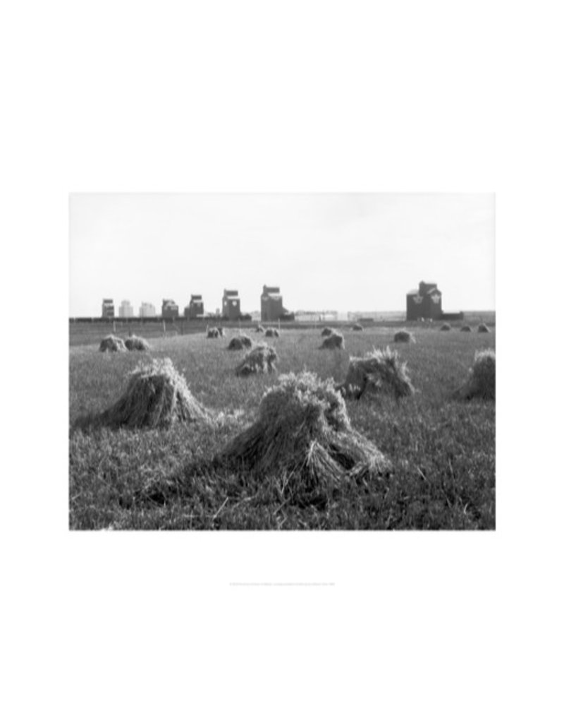 Vivid Archives Grain Elevators at Stavely 1920