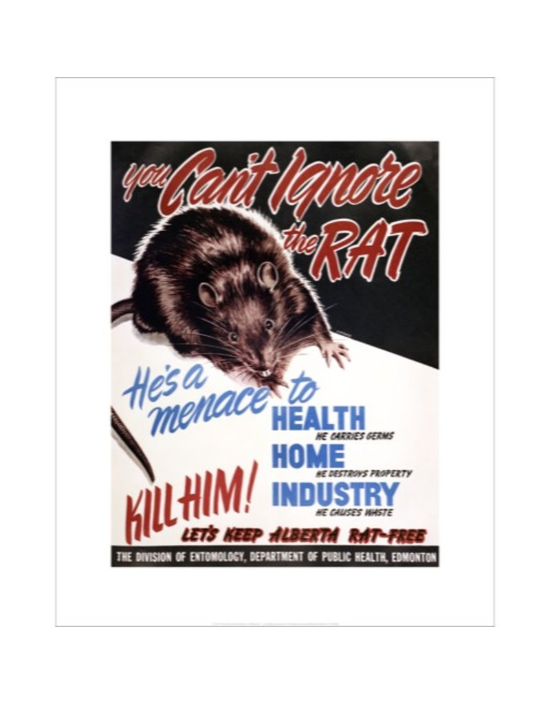 Vivid Archives You Can't Ignore the Rat