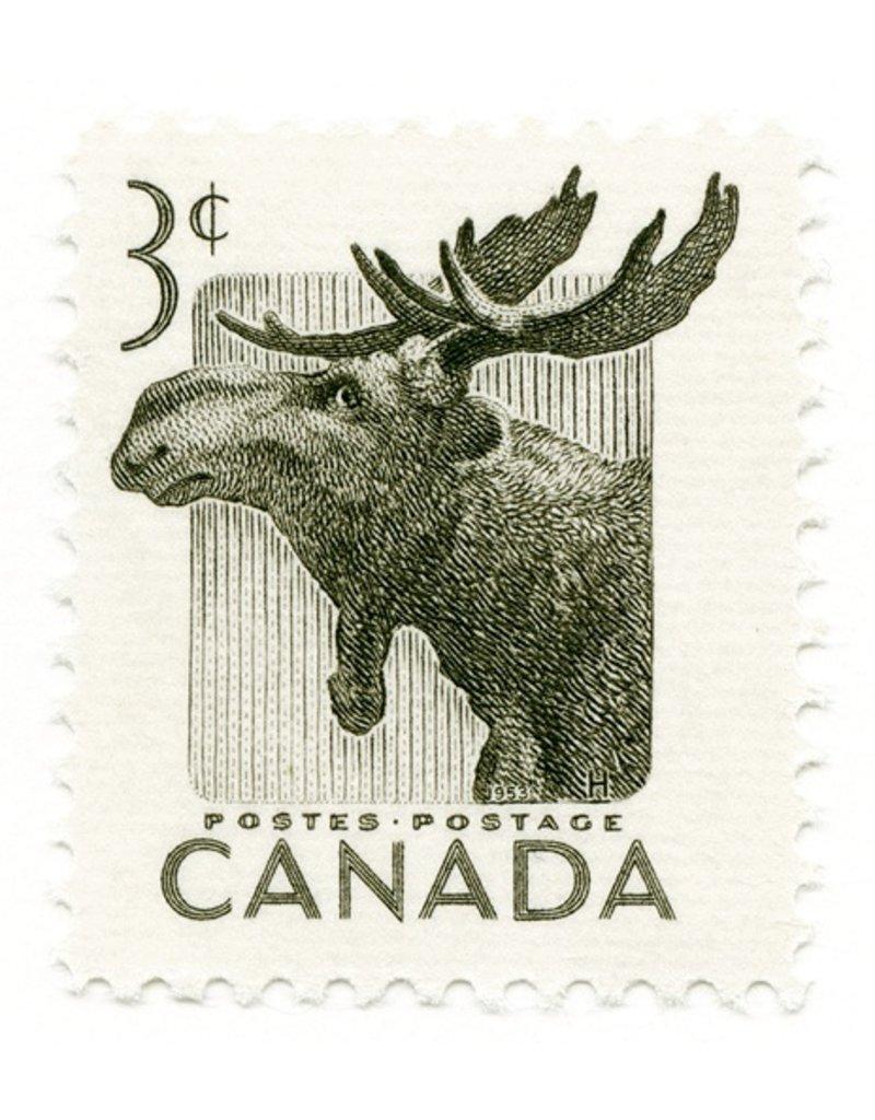 Vivid Print Canada Moose Stamp