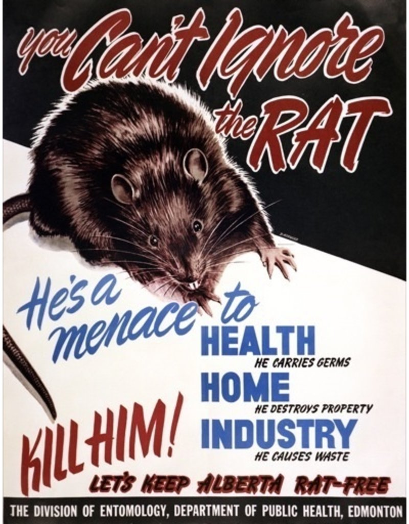 You Can't Ignore the Rat Poster