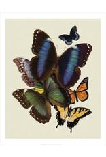 Vivid Print Bee Waeland | Butterflies