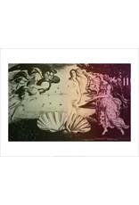 Vivid Print Bee Waeland | Venus Venus