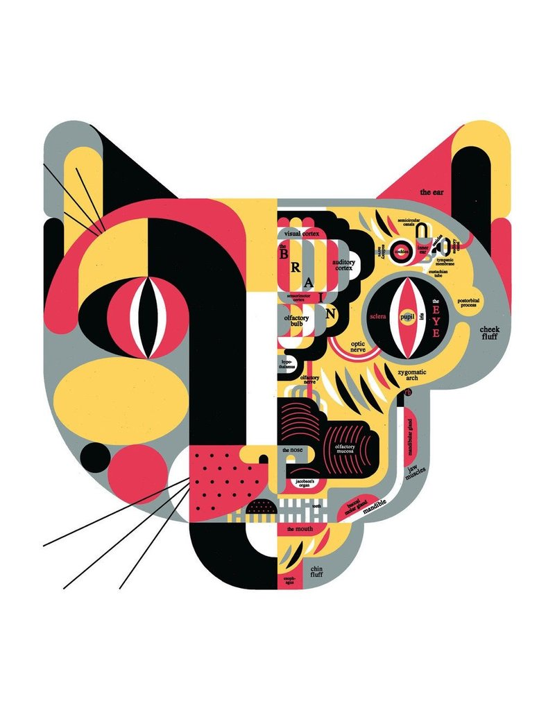 "Vivid Print Raymond Biesinger   Feline Anatomy 20"" Square Silkscreened Print"