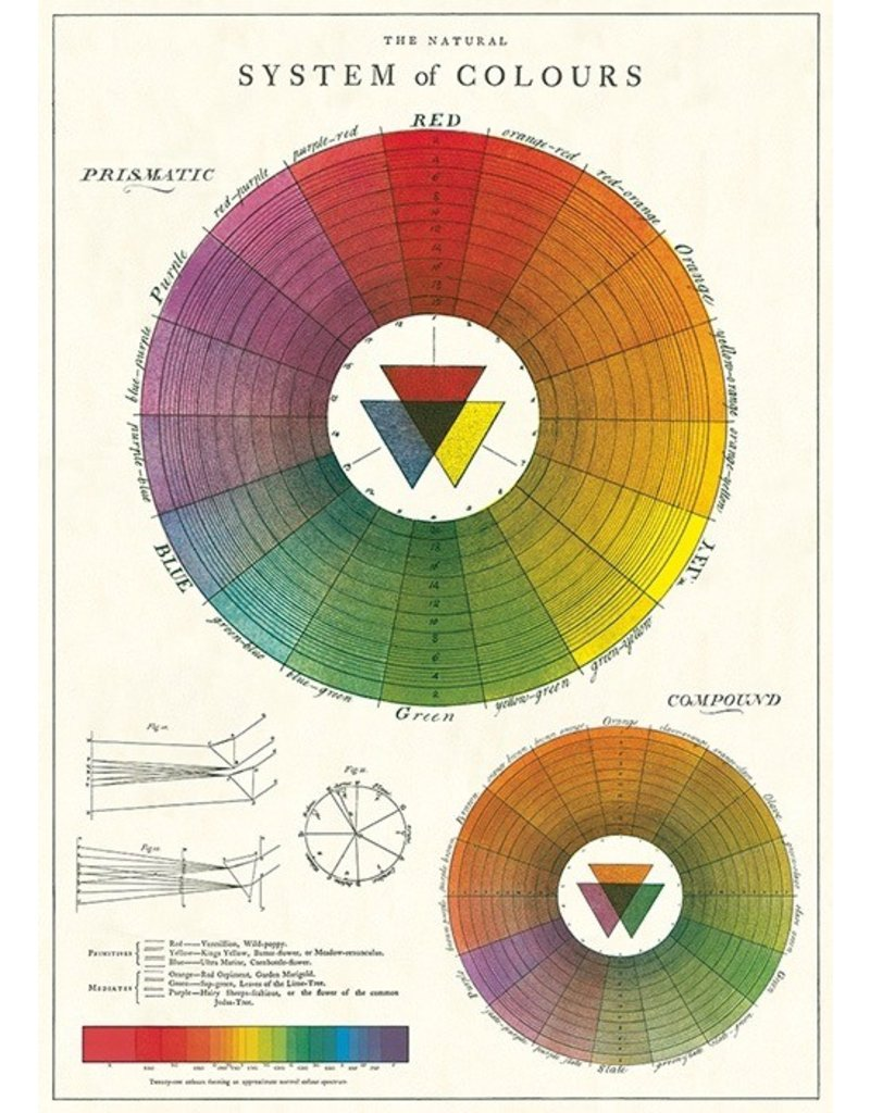 Cavallini Color Wheel Wrap