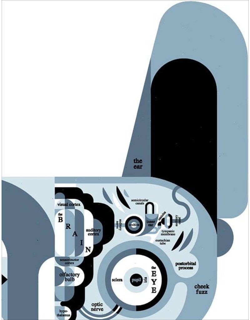 Vivid Print Raymond Biesinger | Canine Anatomy