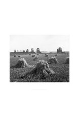 Grain Elevators at Stavely 1920