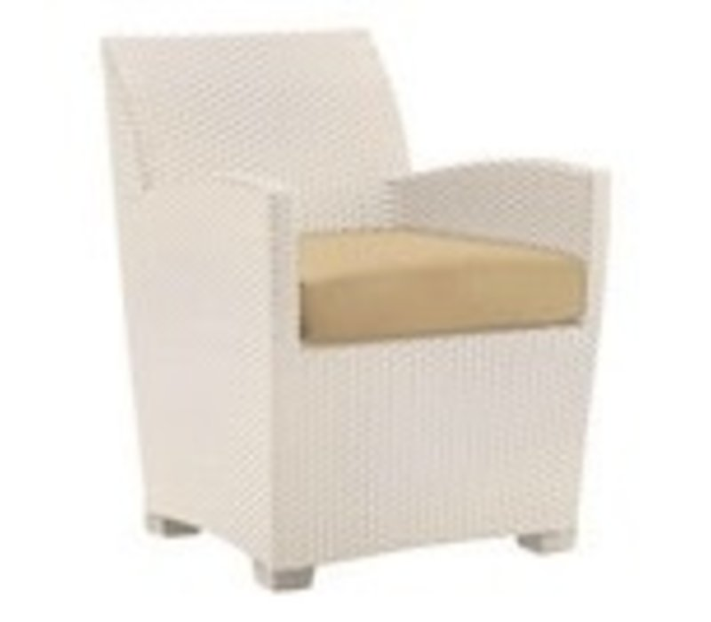 FUSION DINING CHAIR - PARCHMENT WHITE