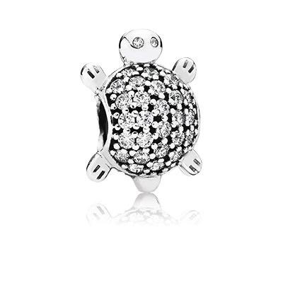 Pandora Sea Turtle