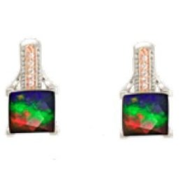 Raye Earrings