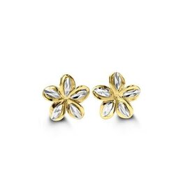 Two Tone Studs