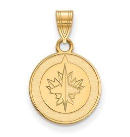 NHL Licensed Winnipeg Jets (10K)